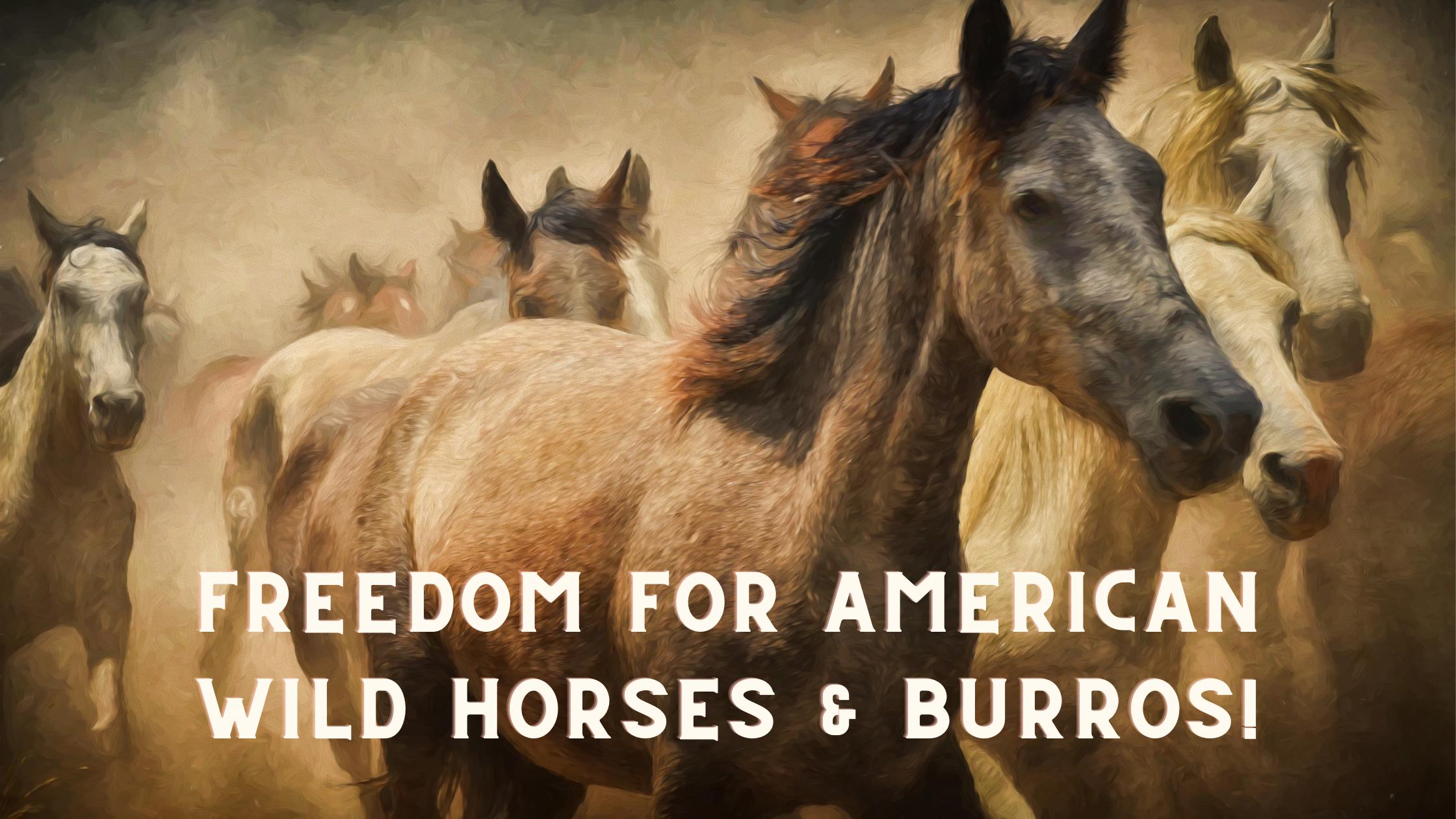 wild-horses-running